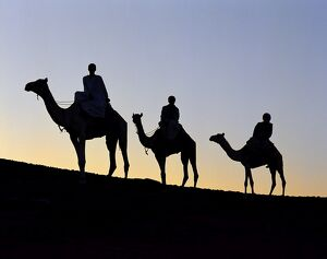 Three camel riders silhouetted against an evening sky