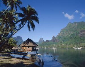 Cook's Bay, Moorea, French Polynesia, South Pacific, Tahiti