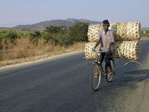 A cyclist taking baskets to market