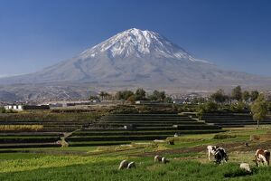 El Misti Volcano and Arequipa town