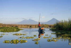 Fisherman, Agua and Pacaya Volcanoes in the background