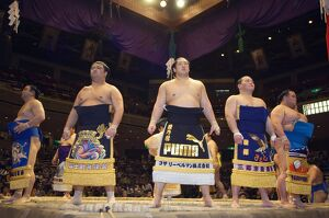 Grand Taikai Sumo Wrestling Tournament Dohyo ring entering