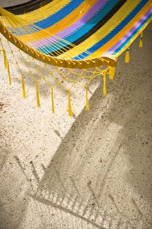 Hammock on beach, Caye Caulker, Belize