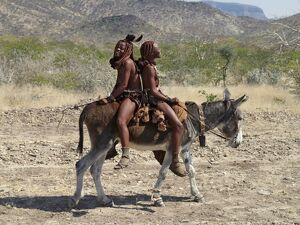 Two happy Himba girls ride a donkey to market