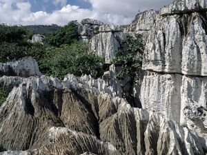 Karst limestone in the Homhil Mountains