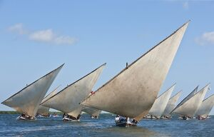 kenya mashua sailing boats participating race