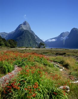 New Zealand, Milford Sound, Mitre Peak