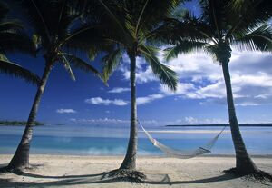 Palms and Hammock, Akitua Motu, Aitutaki, Cook Islands