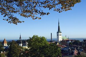 Panoramic City View of the City Wall Towers and St Olav Church
