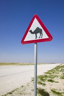 Qatar, Al-Zubara, Road Sign-Road to Al-Zubar