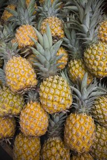 Reunion Island, St-Paul, Seafront Market, pineapples