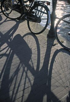 Shadow of Bikes