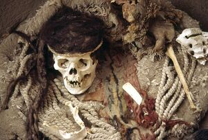 The skull of a Nazca mummy surrounded by pottery