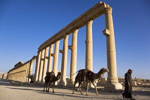 The spectacular ruined city of Palmyra, Syria