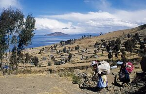 Well tended terraces of Amantani Island with Taquile Island in the background