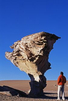 A tourist looks at the Arbol de Piedra or Stone Tree