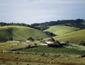 Traditional African houses surrounded by good pasture
