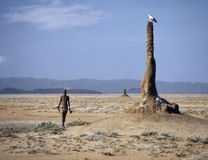 A Turkana man strides purposefully across the treeless
