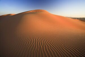 United Arab Emirates, Liwa Oasis, Sand dunes near the Empty Quarter Desert