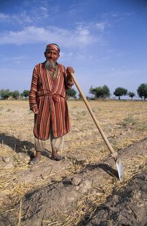 Uzbek man with hoe in a field