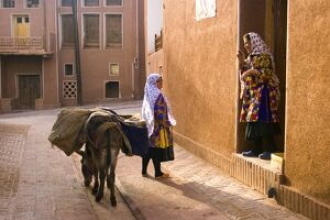 Woman and her donkey, Abyaneh near Kashan, Isfahan province, Iran