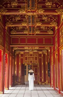 oriental flavours/woman wearing ao dai dress imperial palace inside