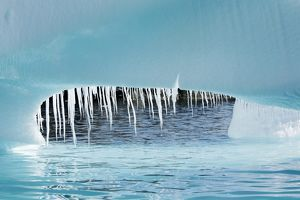 Detail of a melting iceberg (note the dripping icicles) grounded at Heroina Island