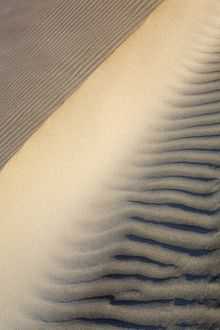 Patterns in the sand dunes of Isla Magdalena on the Pacific side of the Baja Peninsula