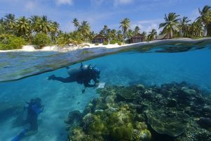 Split image of pristine coral reef and island, Rongelap, Marshall Islands, Micronesia