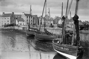 Harbour, East shore, St Monace, Fife