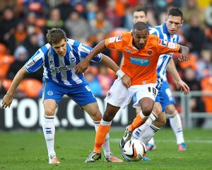 npower Football League Championship - Blackpool v Brighton & Hove Albion - Bloomfield Road
