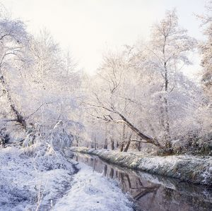 Lowland River in winter with snow