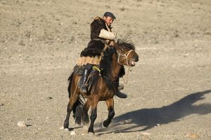 A mongol horseman out on the steppe in Altai mountains near Bayan-Ulgii in western