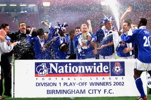 Nationwide League Division One - Playoff Final - Birmingham City v Norwich City