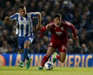 <b>Sky Bet Championship - Brighton and Hove Albion v Birmingham City - AMEX Stadium</b><br>Selection of 1 items