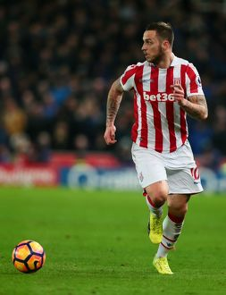 Stoke City v Everton 1st February 2017