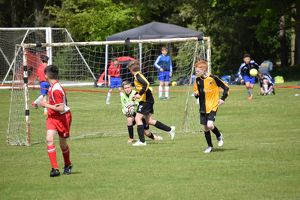 <b>Pilgrim Cup 2015 Action shots 1</b><br>Selection of 102 items