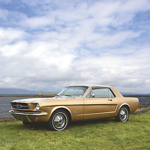 Ford Mustang 1965 Gold