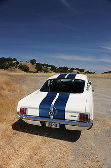 Shelby GT350 Mustang 1966 White blue stripes