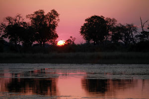 Africa, Botswana, Okavango Delta. Sunset view from the Fish Eagle Bar at Eagle Island Camp