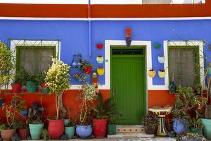 architecture/asilah morocco multi colored house potted plants