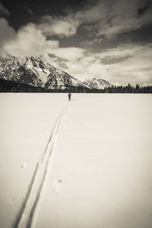 usa/backcountry skier mount moran grand teton national