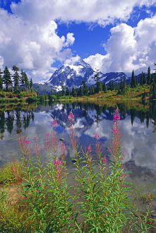 landscape/clearing storm mount shuksan picture lake