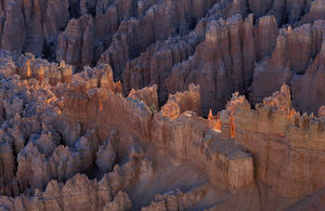 Early morning light on hoodoos at Bryce National Park, Utah