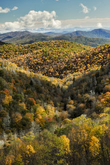usa/north carolina/elevated view fall colors grassy ridge overlook