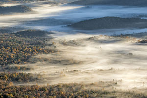 usa/north carolina/elevated view fog filled valley trees emerging sunrise