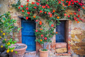 architecture/europe italy val d orcia doors vegetation