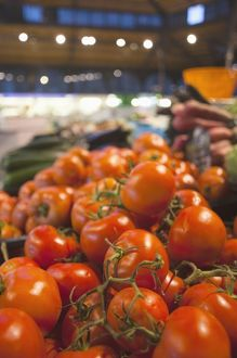 France, Midi-Pyrenees Region, Tarn Department, Albi, covered market, tomatoes