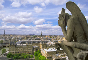 cityscapes/gargoyle roof notre dame cathedral looks paris