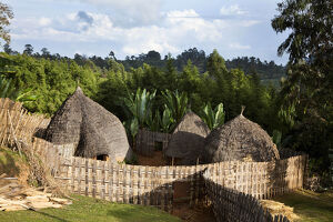 huts dorze people guge mountains ethiopia groves